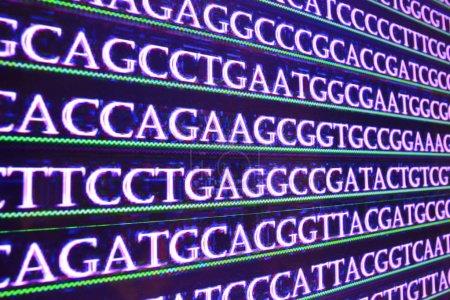 Photo pour ADN de séquence. Fond des symboles du nucléotide bases de molécule d'acide nucléique transcrit. - image libre de droit