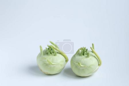 two Fresh kohlrabi on blue background.
