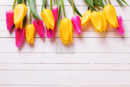 Spring tulips  on white wooden background