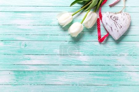White tulips flowers and  heart on turquoise wooden background