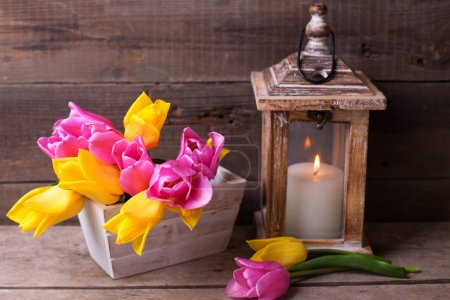 Spring tulips  in box and candle in lantern