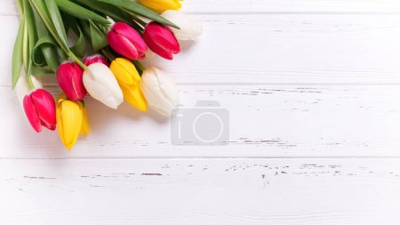 Yellow, pink  and white tulips flowers