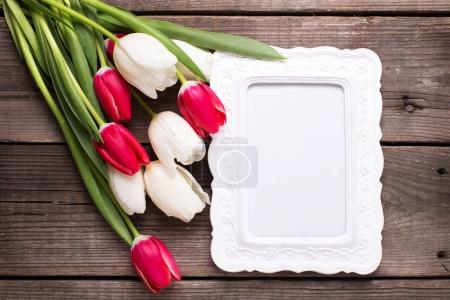 Empty frame and bright tulip flowers