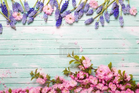 Border from pink almond and blue muscary flowers