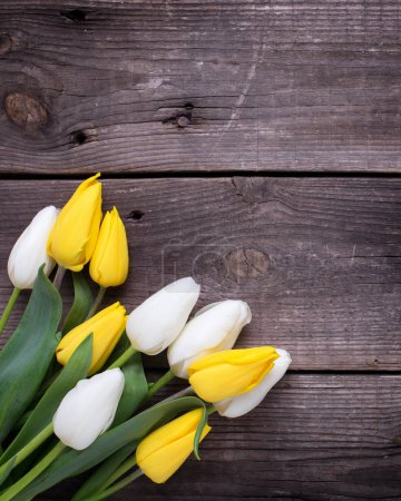 Spring yellow and white tulips flowers  on  vintage wooden background. Selective focus. Place for text. Toned image.