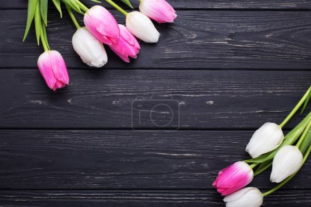 Pink and white tulips flowers  on  vintage wooden background. Selective focus. Place for text. Flat lay.