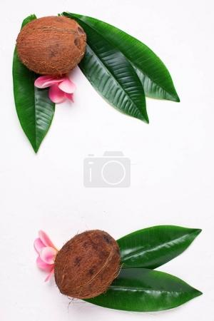 Coconuts, plumeria flowers and green leaves on white textured  background. Flat lay. Top view with copy space