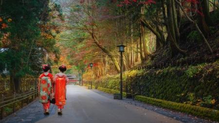 Japanese Geisha on a Misty Road