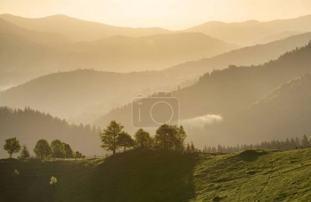 Photo for Hills lines during sunrise. Beautiful natural landscape - Royalty Free Image