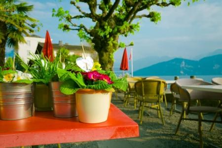 Flower pots in  restaurant