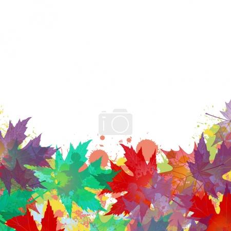 colorful maple autumn leaves