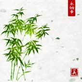 Bamboo tree in Japanese painting style