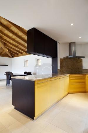 New home interiors furnished , loft villa