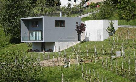 Exterior modern style villa