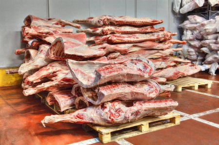 frozen stocks of red meat in a cold warehouse