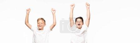Photo pour Plan panoramique de deux frères excités montrant le geste gagnant isolé sur blanc - image libre de droit