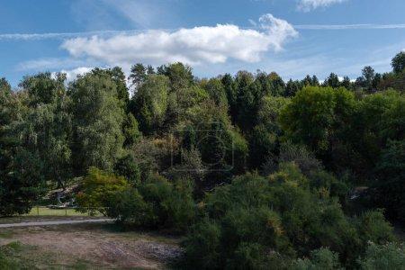 Photo pour Forêts vertes dans le parc et ciel bleu avec des nuages en arrière-plan - image libre de droit
