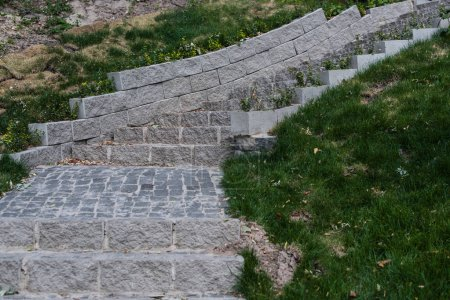 Photo pour Stone stairs between green grass in park - image libre de droit