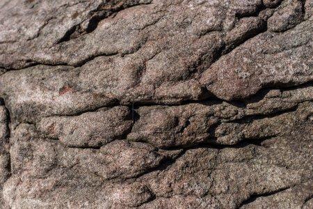 Foto de Vista cercana de la textura marrón de piedra - Imagen libre de derechos