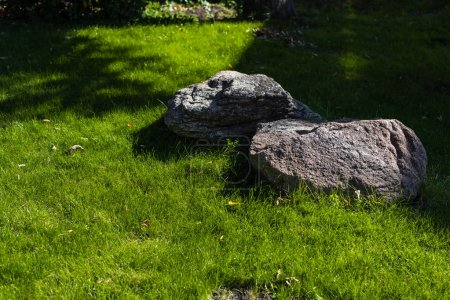 Photo for Two stones with sunlight on green grass of lawn - Royalty Free Image