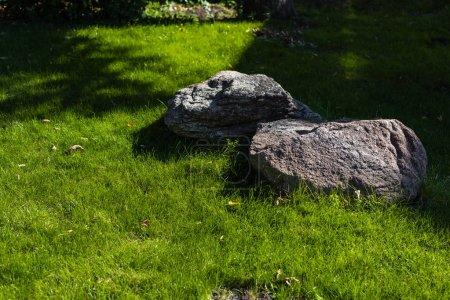 Photo pour Deux pierres ensoleillées sur l'herbe verte de la pelouse - image libre de droit