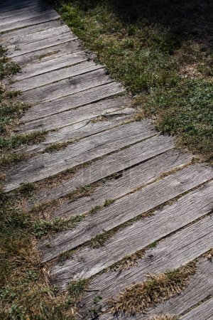Photo pour Vue à grand angle de la passerelle en bois et de l'herbe - image libre de droit