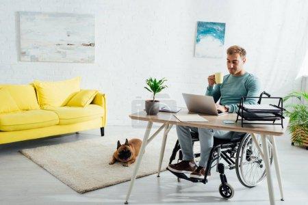 Photo pour Homme handicapé avec ordinateur portable et tasse et bouledogue français dans le salon - image libre de droit