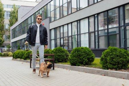 Handsome man walk with french bulldog on leash along street