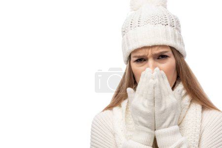 Photo for Upset cold woman warming up in white knitted clothes, isolated on white - Royalty Free Image