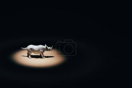 Photo pour Rhinocéros jouet blanc sous les projecteurs sur fond noir - image libre de droit