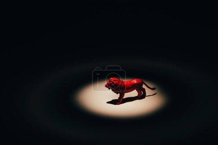 Photo pour Lion jouet rouge sous les projecteurs sur fond noir - image libre de droit