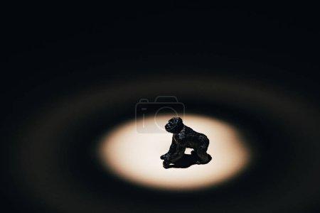 Photo pour Jouet gorille sous les projecteurs sur fond noir - image libre de droit