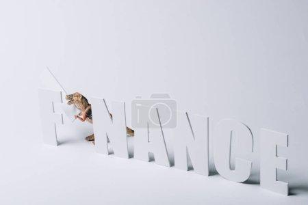 Photo pour Jouet dinosaure avec mot de finance sur fond gris - image libre de droit