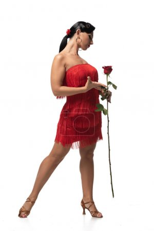 Photo pour Beautiful, stylish tango dancer in dress with fringe holding red rose on white background - image libre de droit
