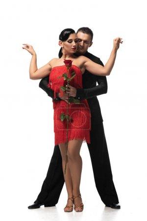 Photo pour Beau, danseur élégant tenant rose rouge et câlin partenaire attrayant tout en effectuant tango sur fond blanc - image libre de droit