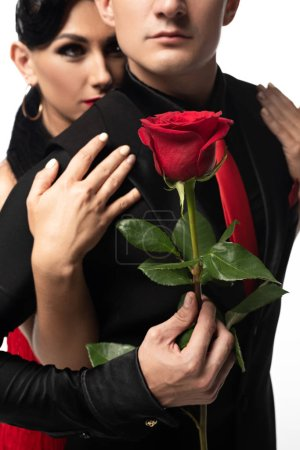 Photo for Attractive tango dancer hugging partner holding red rose isolated on white - Royalty Free Image