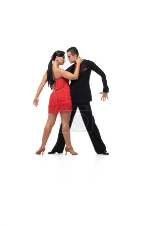 Photo for Elegant dancers looking at each other while performing tango on white background - Royalty Free Image
