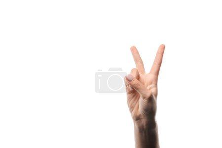 Photo pour Vue recadrée de la femme montrant signe de paix isolé sur blanc - image libre de droit