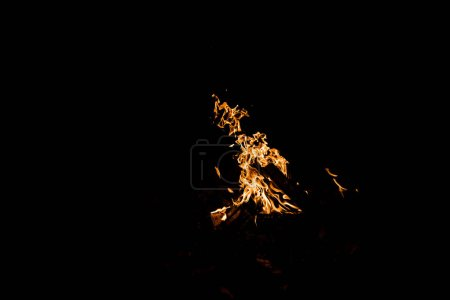 Photo for Logs burning in campfire isolated on black - Royalty Free Image