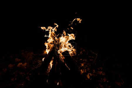 Foto de Troncos ardiendo en el fuego del campamento en la oscuridad - Imagen libre de derechos