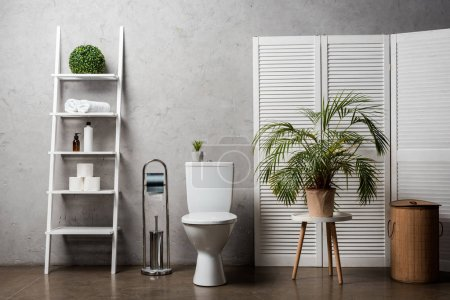 interior of modern bathroom with toilet bowl near rack with cosmetics, towels, toilet paper, laundry basket, palm tree and toilet brush