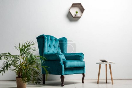 interior of room with elegant velour blue armchair near green plant and coffee table near white wall