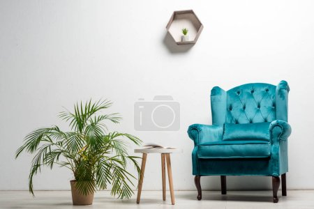 Photo pour Interior of room with elegant velour blue armchair near green plant and coffee table near white wall - image libre de droit