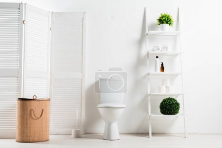 Photo for Interior of white modern bathroom with toilet bowl near folding screen, laundry basket, rack and plants - Royalty Free Image