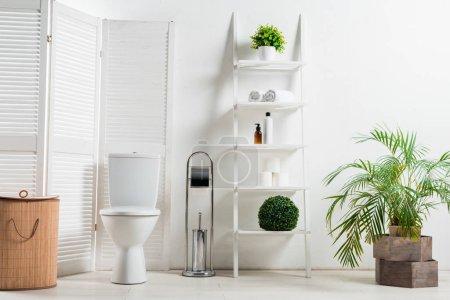 Photo pour Intérieur de la salle de bain moderne blanche avec cuvette de toilette près de l'écran pliant, panier à linge, étagère et plantes - image libre de droit