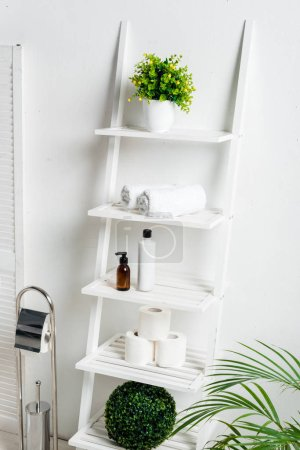 interior of white modern bathroom with toilet brush, rack with towels. toilet paper, cosmetics and plants