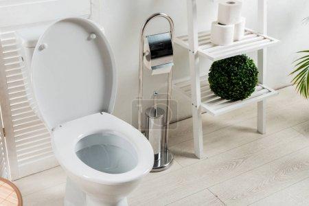 Photo pour Intérieur d'une salle de bain moderne et blanche avec cuvette près d'un écran rabattable, brosse de toilette, papier hygiénique, support et plantes - image libre de droit