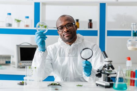 Photo for Smiling african american biologist holding magnifying glass and leaves - Royalty Free Image