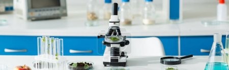 Photo for Panoramic shot of microscope, test tubes, leaves, magnifying glass on table in lab - Royalty Free Image