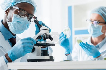 selective focus of african american biologist using microscope and his colleague holding leaves
